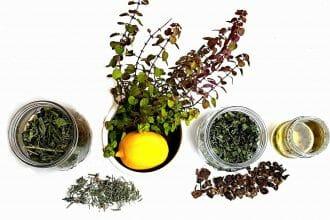 Prírodná vlasová kozmetika z byliniek. Žihľava, medovka, čaj, levanduľa, sušený lopúchový koreň, tymián živý, citrón.