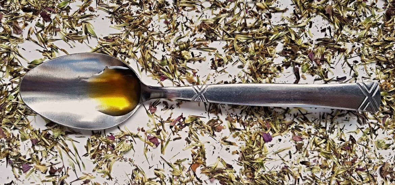 Echinacea rozsypaná okolo tinktúty z nej, ktorá je na lyžičke