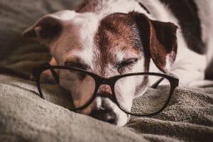 10 prírodných spôsobov ako zatočiť s únavou